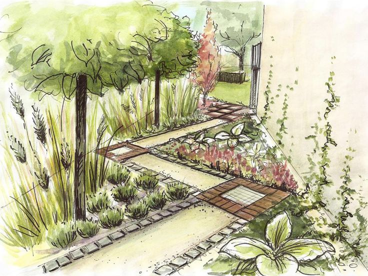 Good use of diagonal lines for paths and planting beds in a narrow side yard.