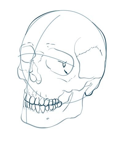 how to draw skull and bones