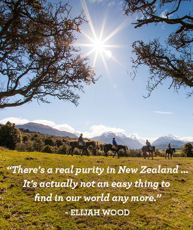 Good Morning Hobbit Quote: 7 Best Quotes About New Zealand Images On Pinterest