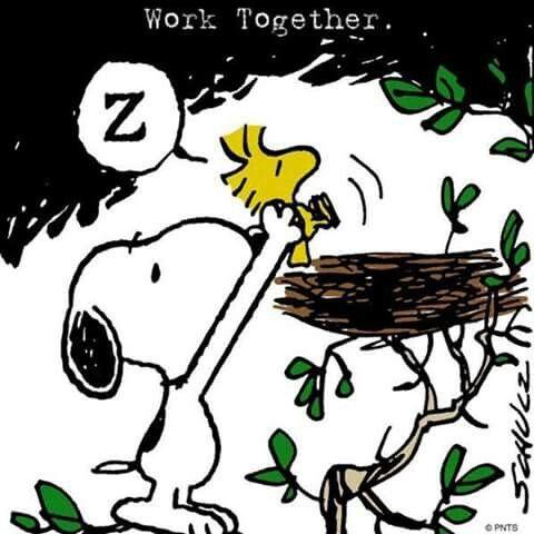 Work together.