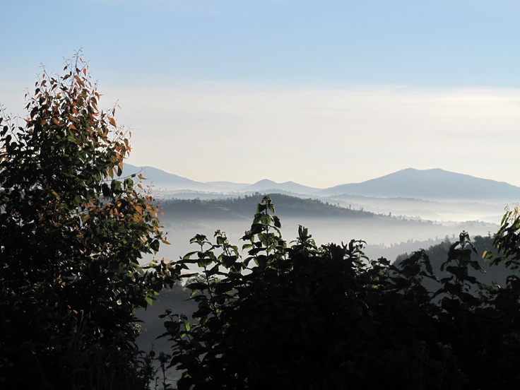 Misty morning in Rwanda