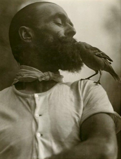bird and beard