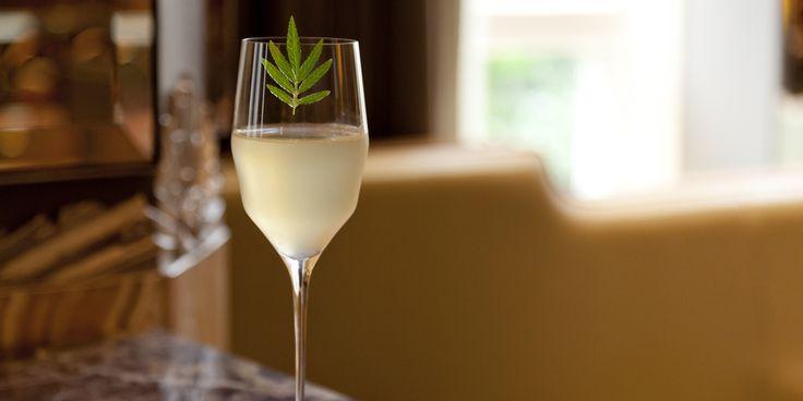 Apple marigold, cider and apple honey, sparkling wine