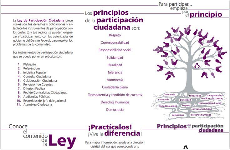 Principios de la Participacion Ciudadana