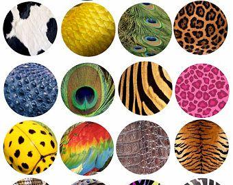 Insekt Haut Texturen Tiermustern clip Art Collage Blatt 2-Zoll-Kreisen Tiger Leopard Schlange digitaler Download Grafiken Bilder Ausdrucke