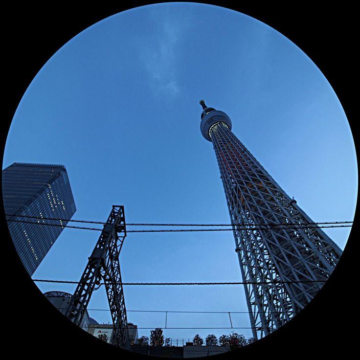 2016.11.20 #東京スカイツリー