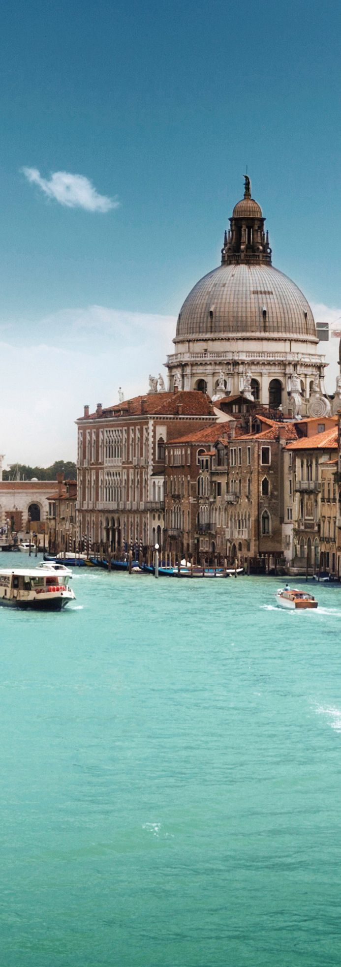 Il Canal Grande e Basilica di Santa Maria della Salute, Venezia