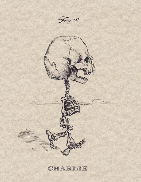 """Michael Paulus, """"Skeletal Systems"""""""