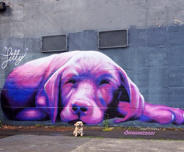 PURPLE STREET ART! by Silly Sully, Melbourne, 2014 | Street Art | Street Artists | Art | modern art | urban artists | urban art | travel | graffiti | mural | Schomp MINI https://www.etsy.com/shop/urbanNYCdesigns?ref=hdr_shop_menu #streetartists
