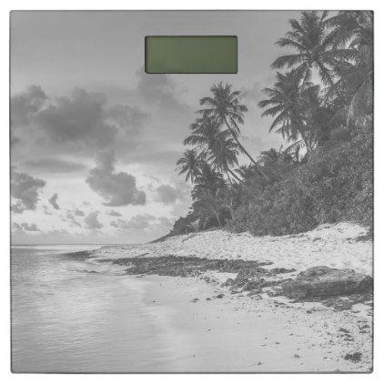 #modern - #Gray Tropical beach design Bathroom Scale