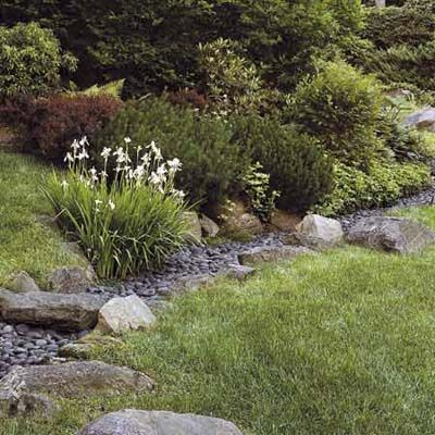 You can turn drainage solutions into features that enhance your landscape—and protect natural waterways. Ditches can be landscaped as swales that look like creek beds or small meadows. Gutter water can flow into rain gardens that provide a habitat for butterflies and birds.