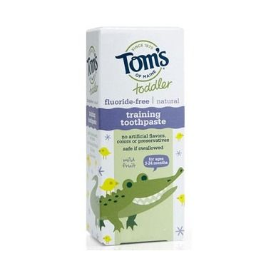 Tom\'s of Maine Toddler Training Toothpaste with Mild Fruit flavour is now at Well.ca!