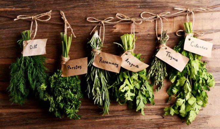 About herbs…