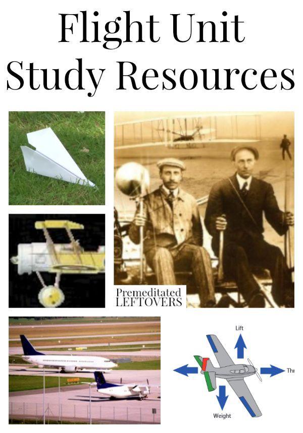 flight ideas court case study