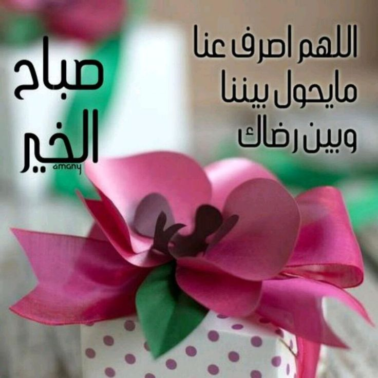happy valentine arabic song