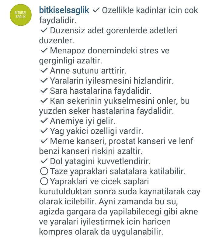ASLAN PENÇESİ