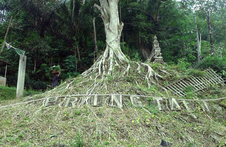 Candi Pringtali, Samigaluh, merupakan sebuah susunan batu kecil di bawah pohon. Letaknya persis di atas jalan raya. Dari sini dapat melihat pemandangan di warung kecil sambil beristirahat