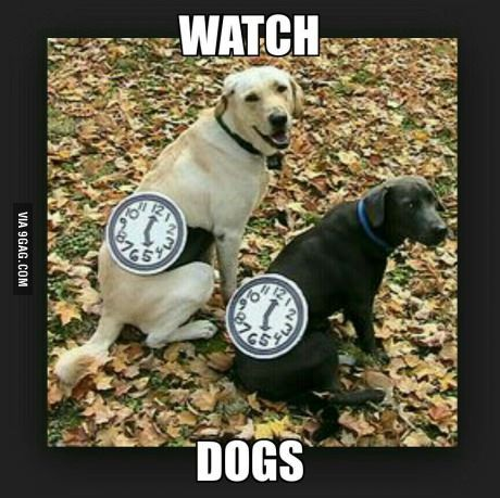 Just Watch Dogs