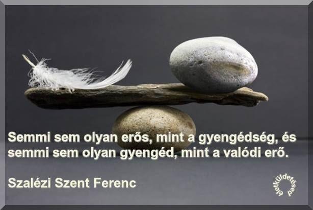 Szalézi Szent Ferenc gondolata az erőről és a gyengédségről. A kép forrása: Az Életküldetésed