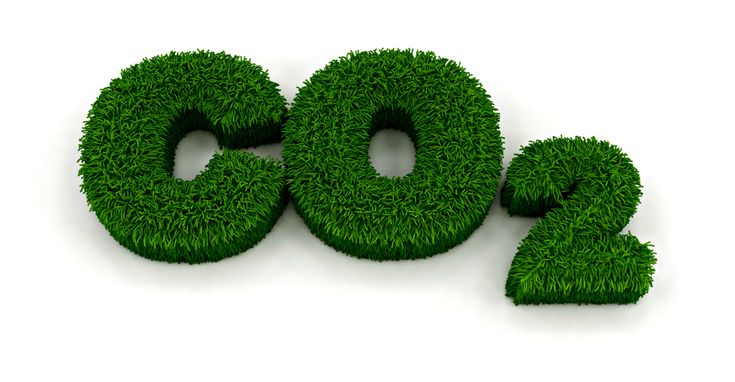 """""""Atmospheric CO2 is not a pollutant, it is in fact the very elixir of life,"""" CO2 Coalition adviser Craig Idso says of the climate change debate at CPAC. If you don't publish, you won't get a grant, and therefore won't be able to support your family. If you live on grant money, and you want to survive, you repeat what the grant-givers are saying."""