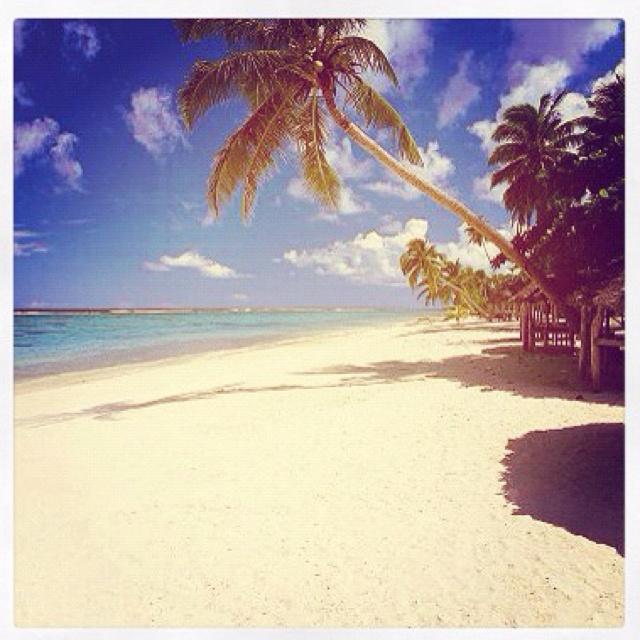 dreaming of Samoa
