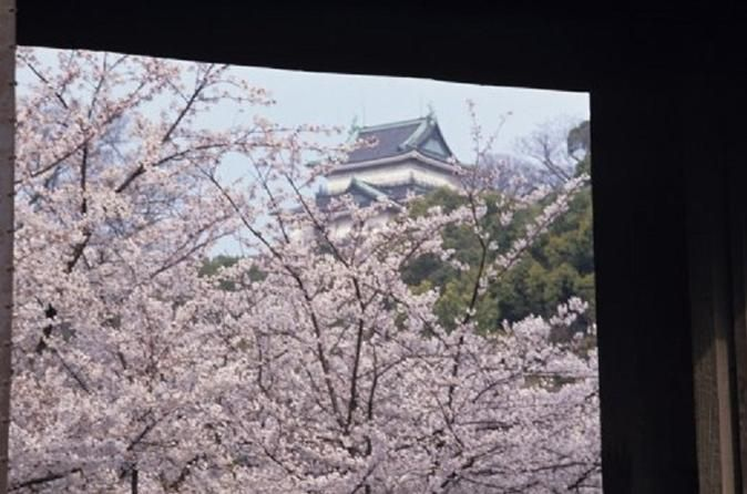 """Cherry Blossom Day Trip to Wakayama Prefecture from Osaka Enjoy this day trip to Wakayama prefecture from Osaka by coach bus. You will stop by four of the most famous places to enjoy the view of Cherry Blossom in the Wakayama prefecture such as the Negoro-ji Temple, Wakayama Castle, Dojo-ji Temple, and Hinomisaki Park. This tour also includes a wonderful Japanese sea bream, or """"tai,"""" lunch set.You will be picked up at the meeting point and will head to the first famous cherry ..."""