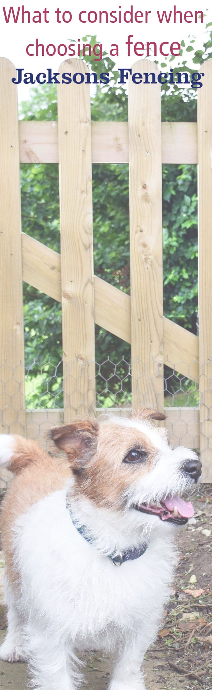 Vegetable garden plans for beginners ayanahouse - What To Consider When Choosing A Garden Fence It S Always Best To Plan Before Choosing A Garden Fence If You Have Pets Such As Dogs You May Need A Fence