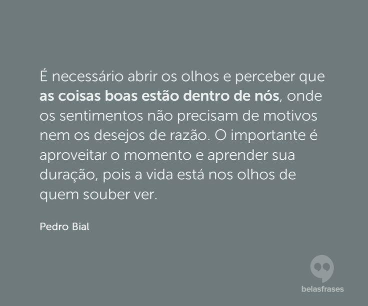25+ Melhores Ideias De Frases Pedro Bial No Pinterest
