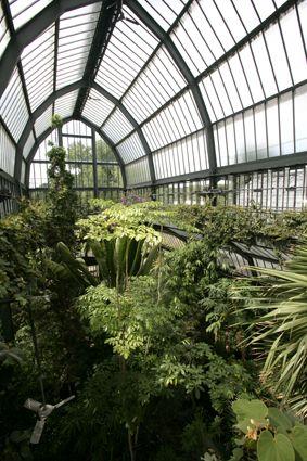 Le jardin botanique de Lyon