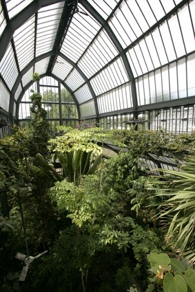 Le jardin botanique de Lyon, Parc de la tête d'or. France