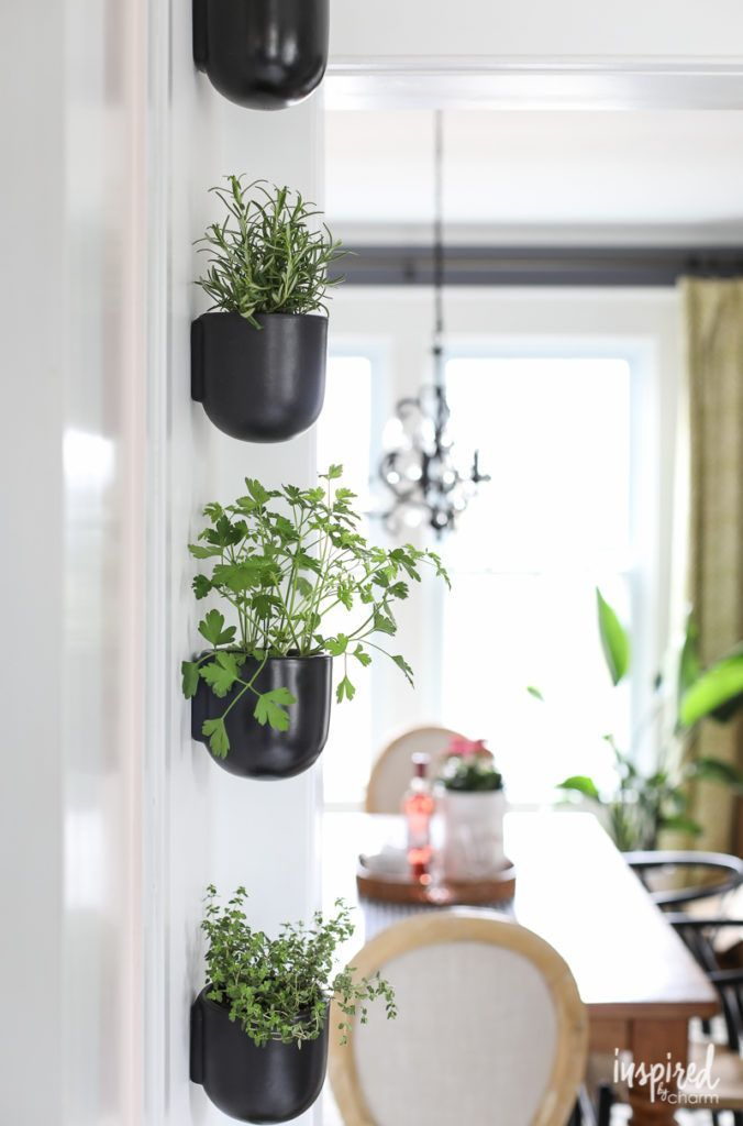 How To Create A Vertical Modern Herb Garden For Your Kitchen Inspired By Charm Herb Garden In Kitchen Vertical Herb Gardens Herbs Indoors