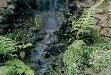 Durham University Botanical Garden