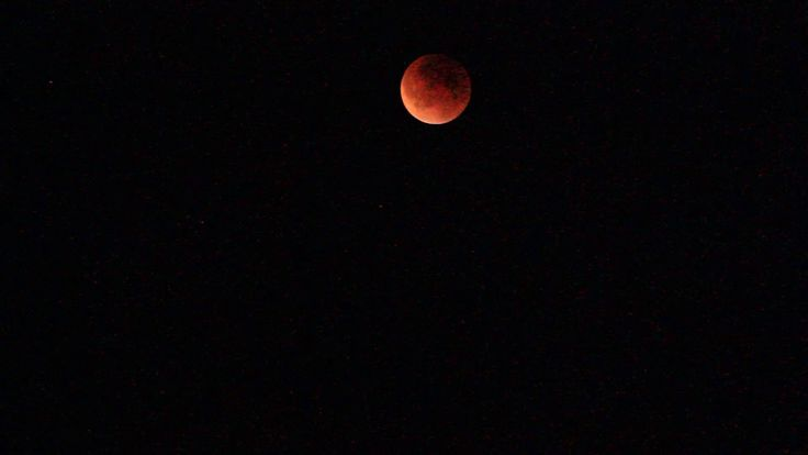 Blood Red /Super Moon Eclipse