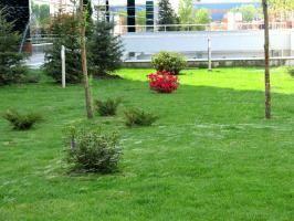 Sisteme de irigatii, eco-horticultura servicii e-g.ro