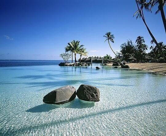 "Earth Pics on Twitter: ""Crystal clear water in Tahiti https://t.co/kbcb4HB92Y"""