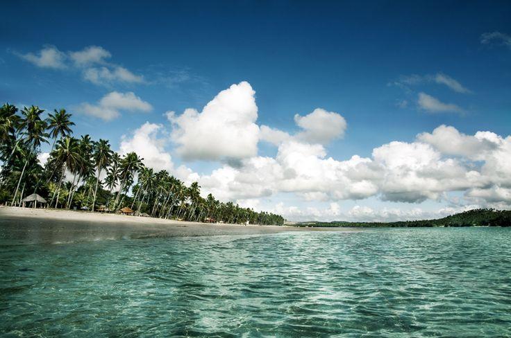 PRAIA DOS CARNEIROS (PERNAMBUCO) BRAZIL Nordeste brasileiro: conheça 25 praias de tirar o fôlego