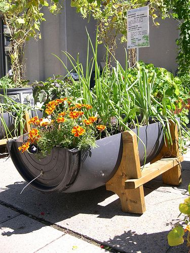 A Montreal Alternative*. Recycled PlantersOutdoor Planters55 Gallon  DrumBarrel PlanterGarden ...