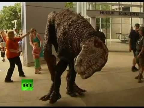 """The reopening of an Australian Museum of Natural History has been a real thrill for visitors. Some of the delighted and rather frightened guests however think the animatronic creatures greeting them at the entrance were """"a little too realistic"""".    The Queensland Museum of Natural History in Brisbane chose to mark its reopening after renovation with an unusual party. It invited several animatronic dinosaurs."""
