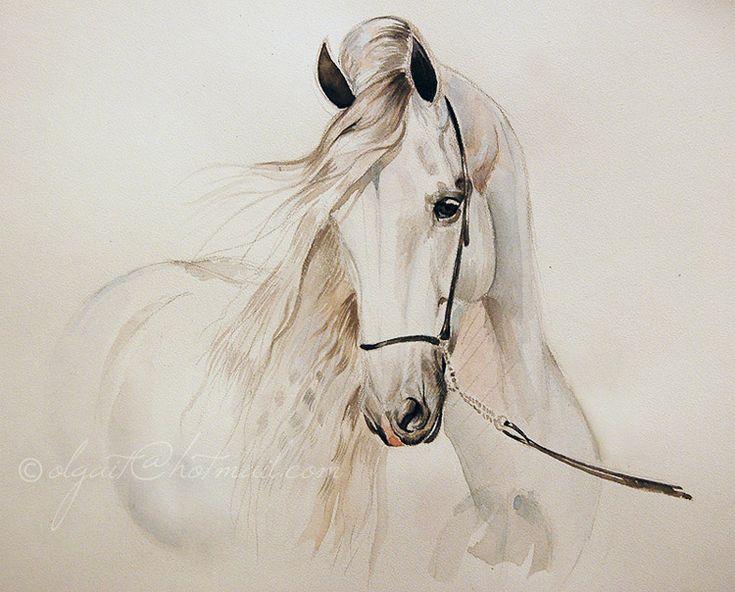horse artwork | Andalusian stallion portrait , 2009