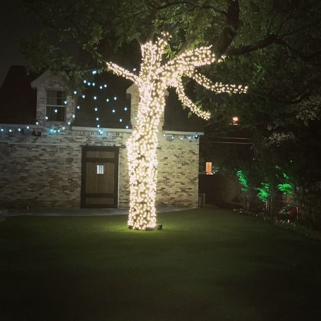 1000+ images about String / Party Lights Installation by Dallas Landscape Lighting on Pinterest ...