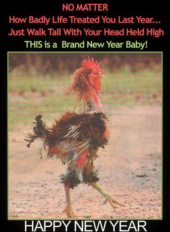 Funny Happy New year Greetings