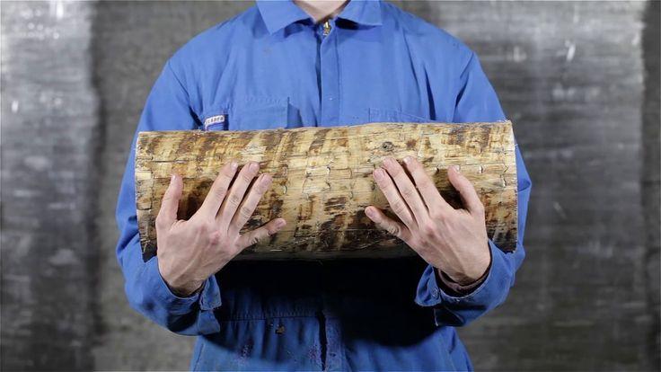 The Forest Project - BAUX Acoustic Panels