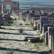 Volubilis, Morocco  UNESCO site, King Juba II & Queen Cleopatra Selene ruled here.