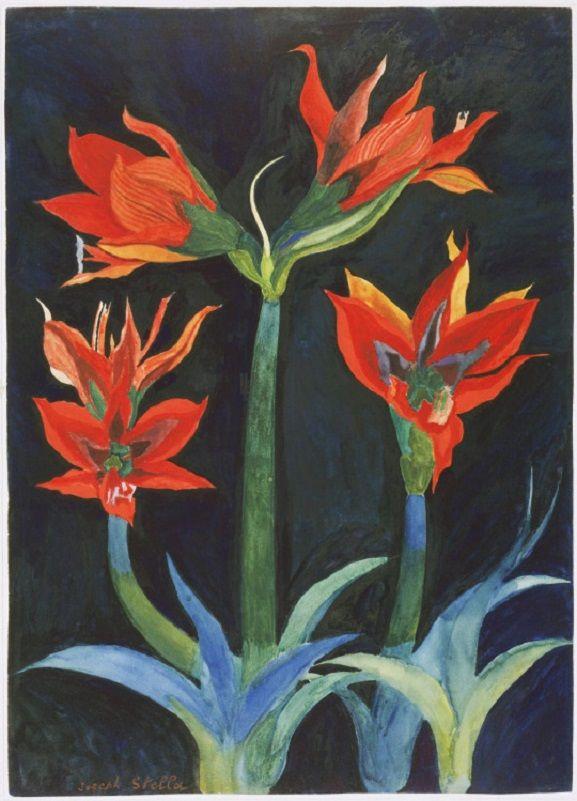 """Joseph Stella (1877-1946) - Red Amaryllis, c.1929 - Stella olasz születésű amerikai festőművész észak-afrikai és barbadosi utazásai során megérzett egy művészi ihletet, hogy trópusi madarakkal és virágokkal foglalkozó festmény sorozatot készítsen. Ezekben az életszerű munkákban, például a """"Red Amaryllis"""" – ban Stella jól elkapja a trópusi virágok intenzív élénk vörösét és buja zöldjét a sötét háttér ellenében… valahogy egy természetes és természetfeletti állapot együttes ábrázolását sikerül…"""