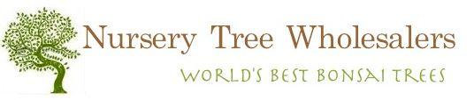 Nursery Tree Wholesalers