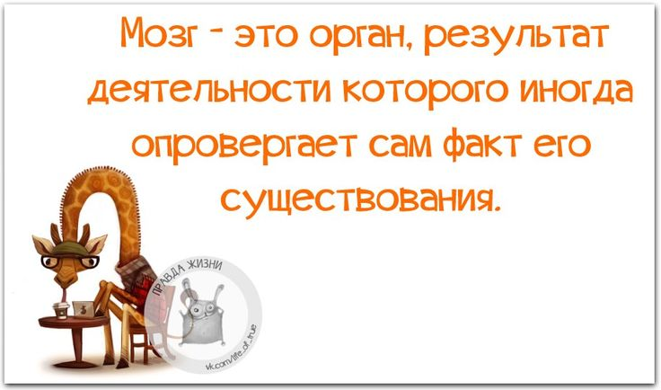 12FwAdWxYBA.jpg (915×540)