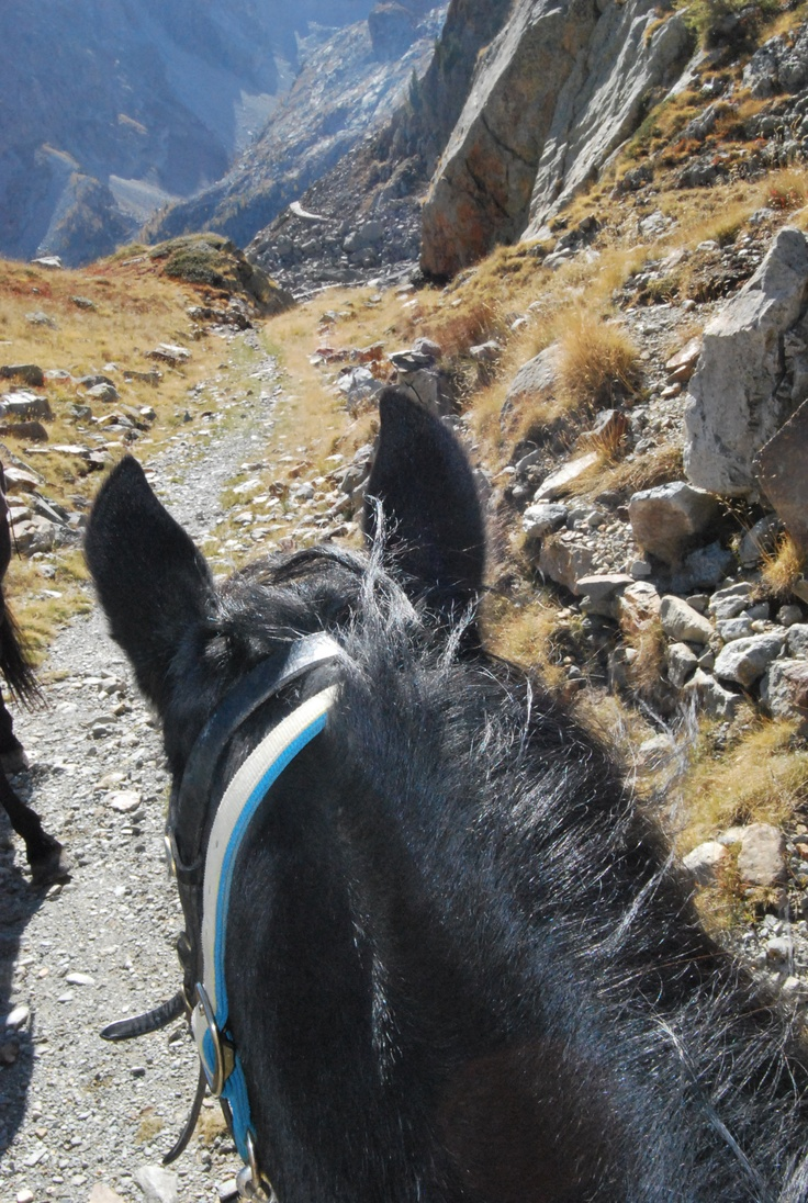 Horse & mountains: very me.
