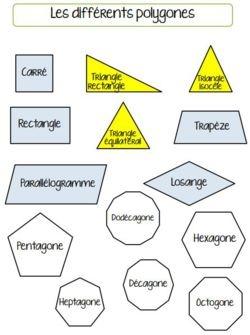 Séquence 3: les polygones