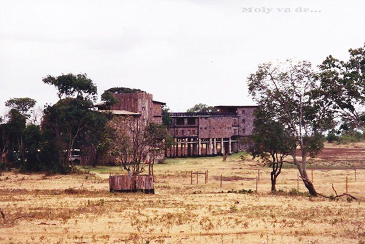 Un hotel construido en los árboles. #Molyvade...#viaje #África #Kenia #Treetops #Aberdare #molyvade.blogspot.com