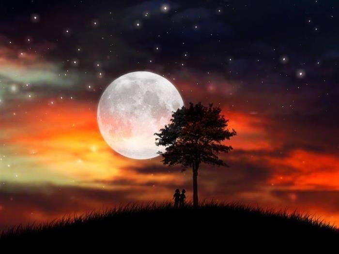 """lua, poesia      """"Em noite de lua cheia, vejo teu sorriso no brilho das estrelas."""" - Thiago Rocha"""